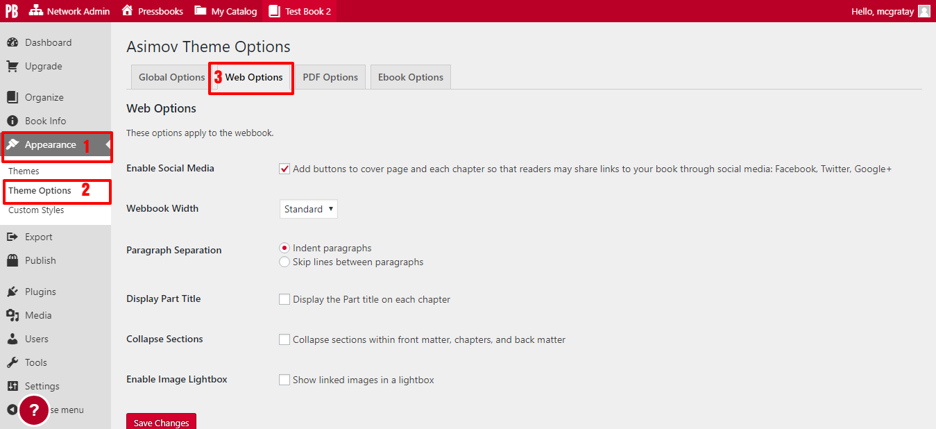 Click on the Web Options tab on the Theme Options page