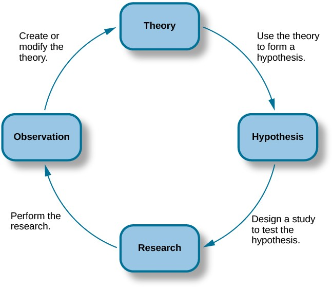 """A diagram has four boxes: the top is labeled """"theory,"""" the right is labeled """"hypothesis,"""" the bottom is labeled """"research,"""" and the left is labeled """"observation."""" Arrows flow in the direction from top to right to bottom to left and back to the top, clockwise. The top right arrow is labeled """"use the hypothesis to form a theory,"""" the bottom right arrow is labeled """"design a study to test the hypothesis,"""" the bottom left arrow is labeled """"perform the research,"""" and the top left arrow is labeled """"create or modify the theory."""
