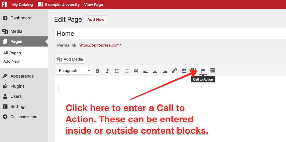 "Click ""Call to Action"" to enter a Call to Action. These can be entered inside or outside content blocks"