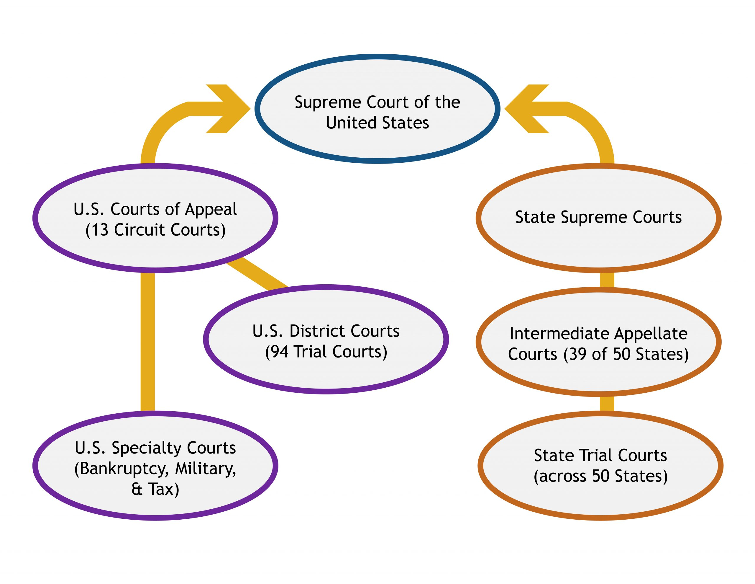 Flow chart showing the structure of trial and appellate courts