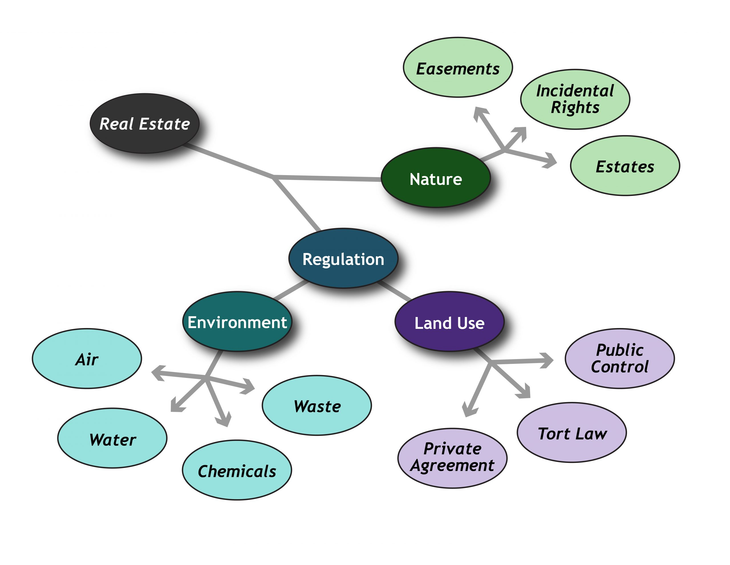 Diagram showing the types of real estate legal causes of action