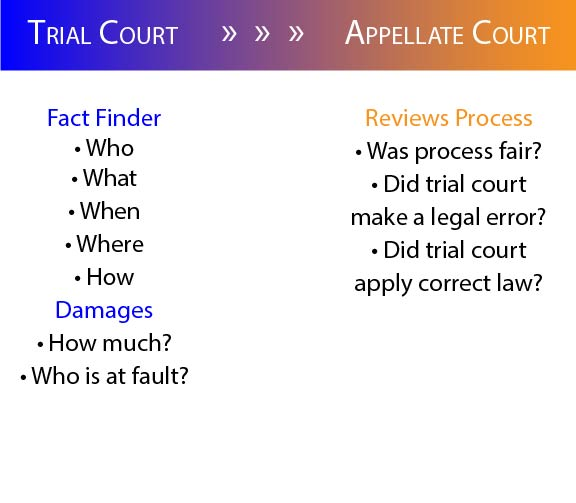 graphic showing roles of trial and appellate courts