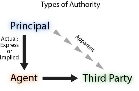 graphic showing types of authority from principal to agent