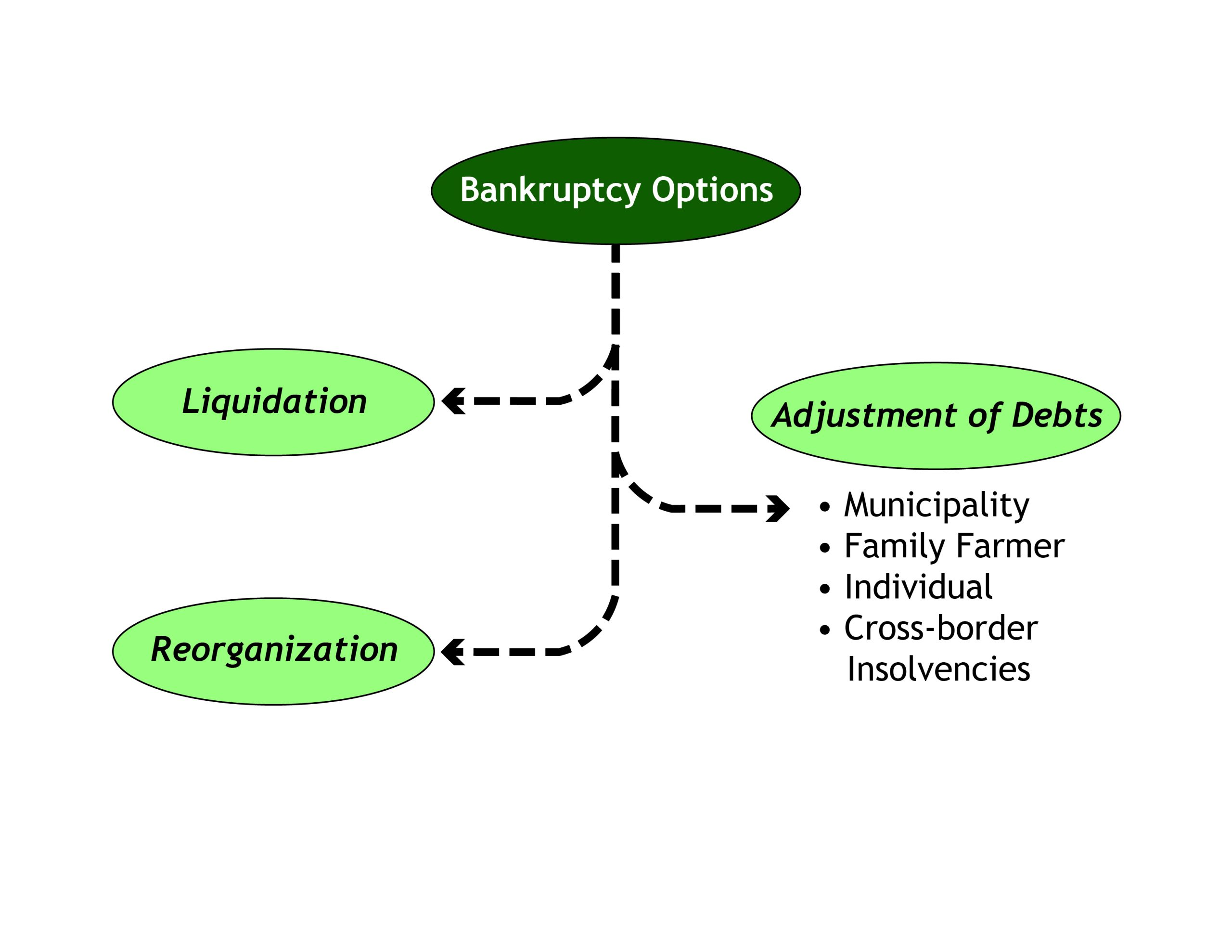 Graphic showing three types of bankruptcy options
