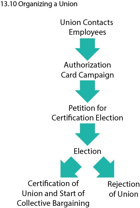 Flow chart showing process of organizing a union