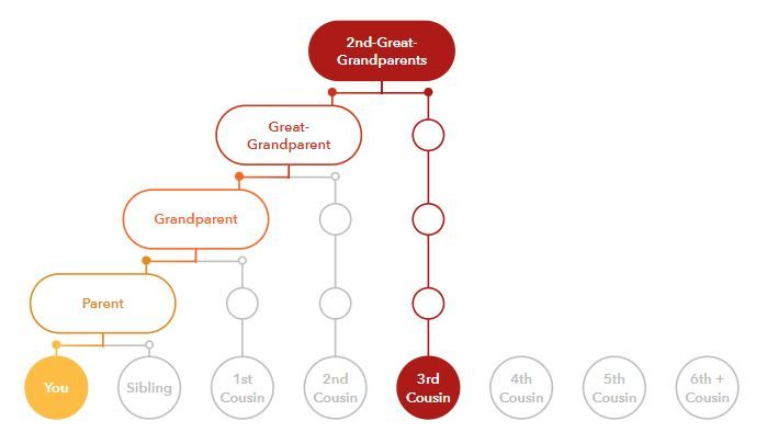 Common Ancestor Chart for 3rd Cousins Source: 23AndMe