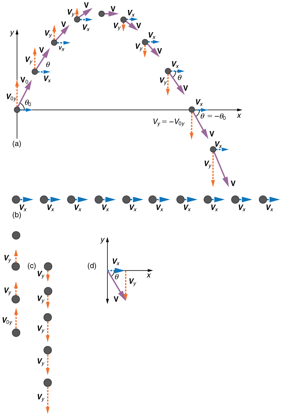 Unit 5 - Projectile Motion - Introduction to Physics
