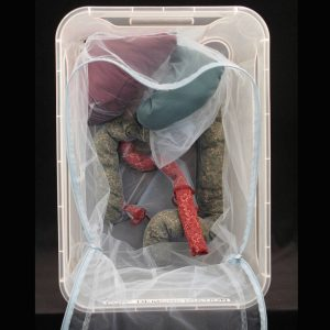 peritoneum in a box