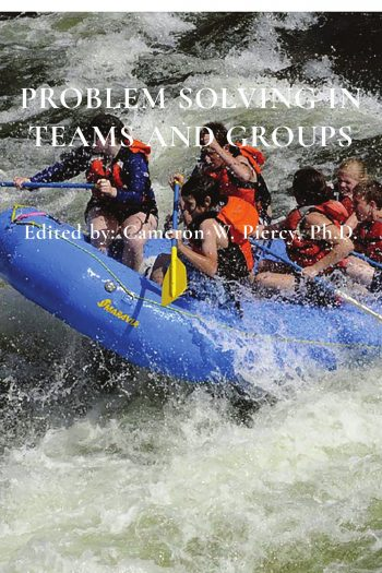 Cover image for Problem Solving in Teams and Groups