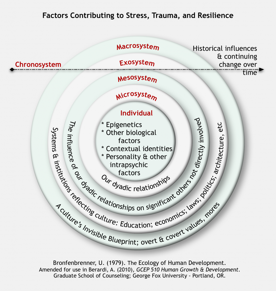 Diagram of factors contributing to stress, trauma, and resilience