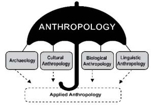 Image of Anthropology and Its Subfields