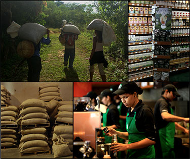 Images of workers preparing coffee in the fields and in the coffee shop