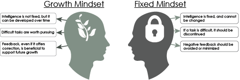 Growth Mindset: Intelligence is not fixed but it can be developed over time, difficult tasks are worth pursuing, Feedback, even if it offers correction, is beneficial to support future growth: Fixed mindset: Intelligence is fixed and cannot be changed, if a task is difficult, it should be discontinued, negative feedback should be avoided or minimized
