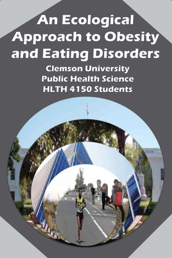 Cover image for An Ecological Approach to Obesity and Eating Disorders