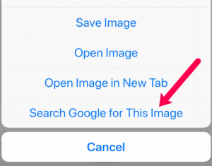 """Touching and holding on an image in Chrome on a smartphone gives a menu option to """"Search Google for This Image"""""""