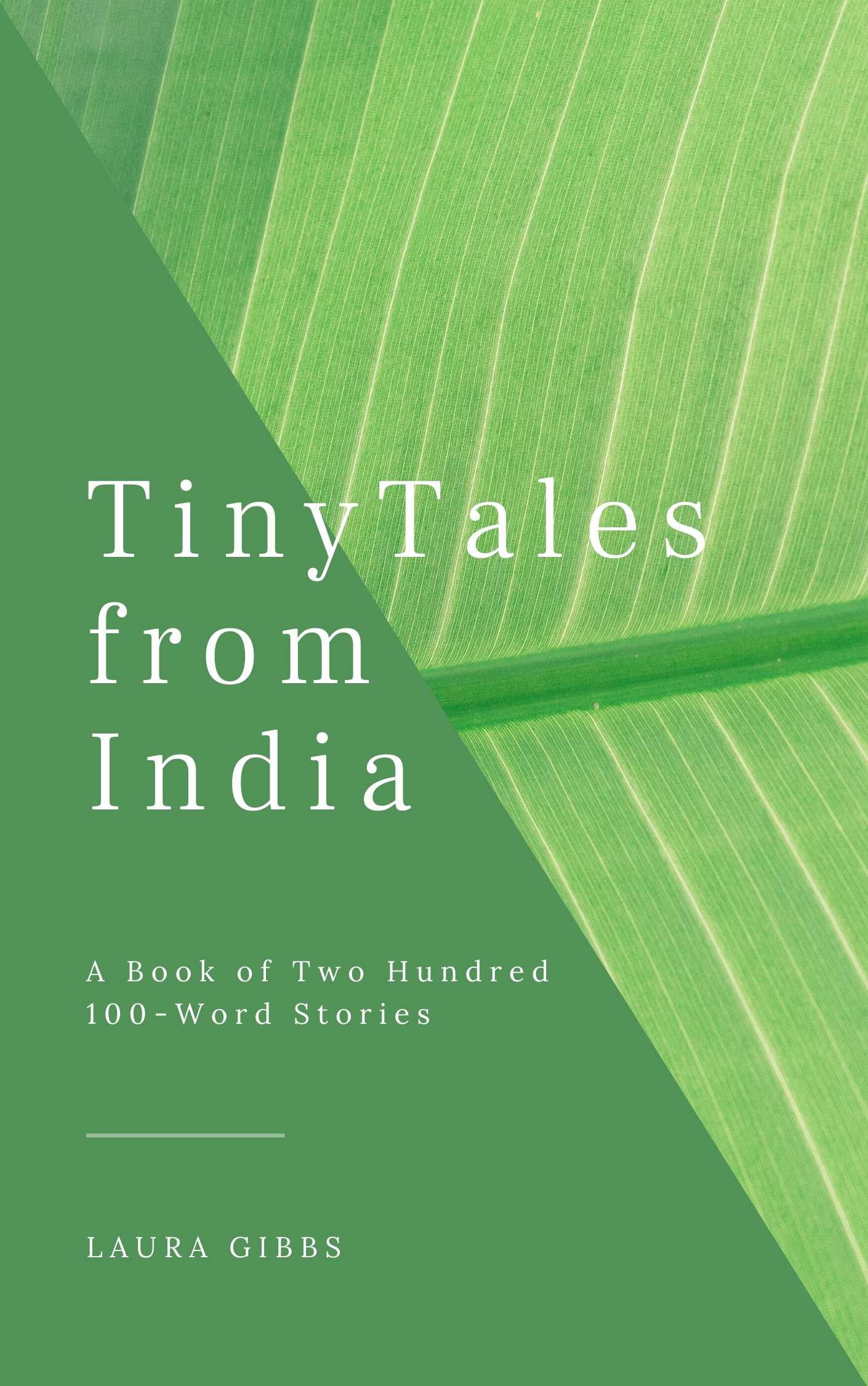 Cover image for Tiny Tales from India