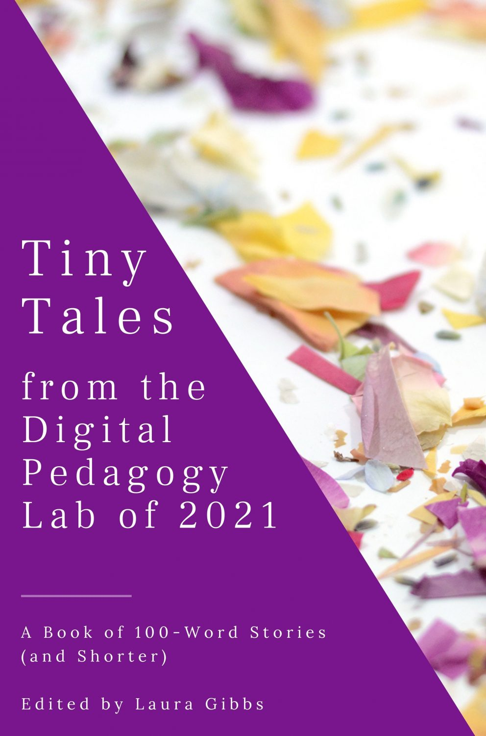Cover image for Tiny Tales from the Digital Pedagogy Lab 2021