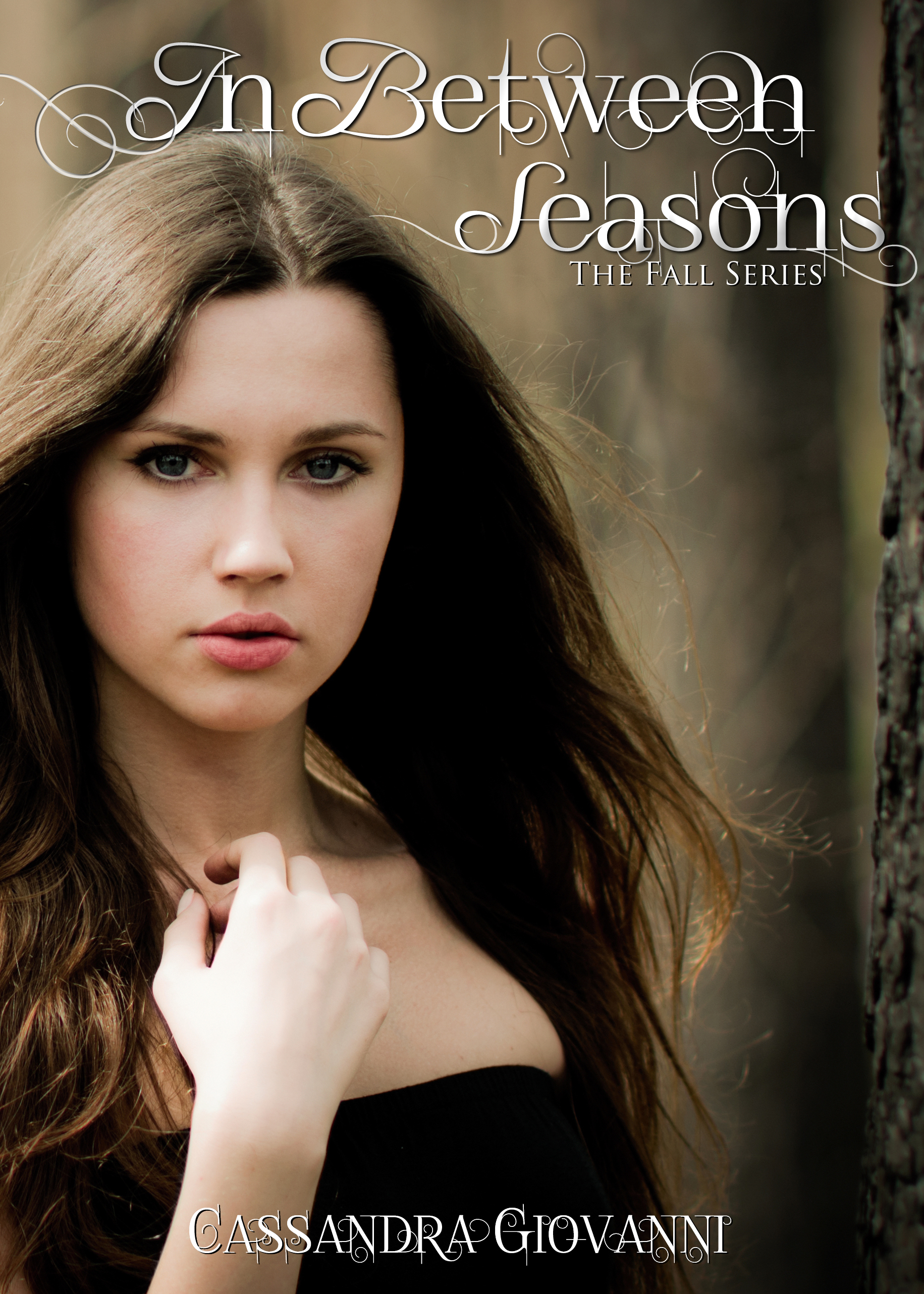 Cover image for In Between Seasons