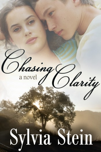 Cover image for Chasing Clarity