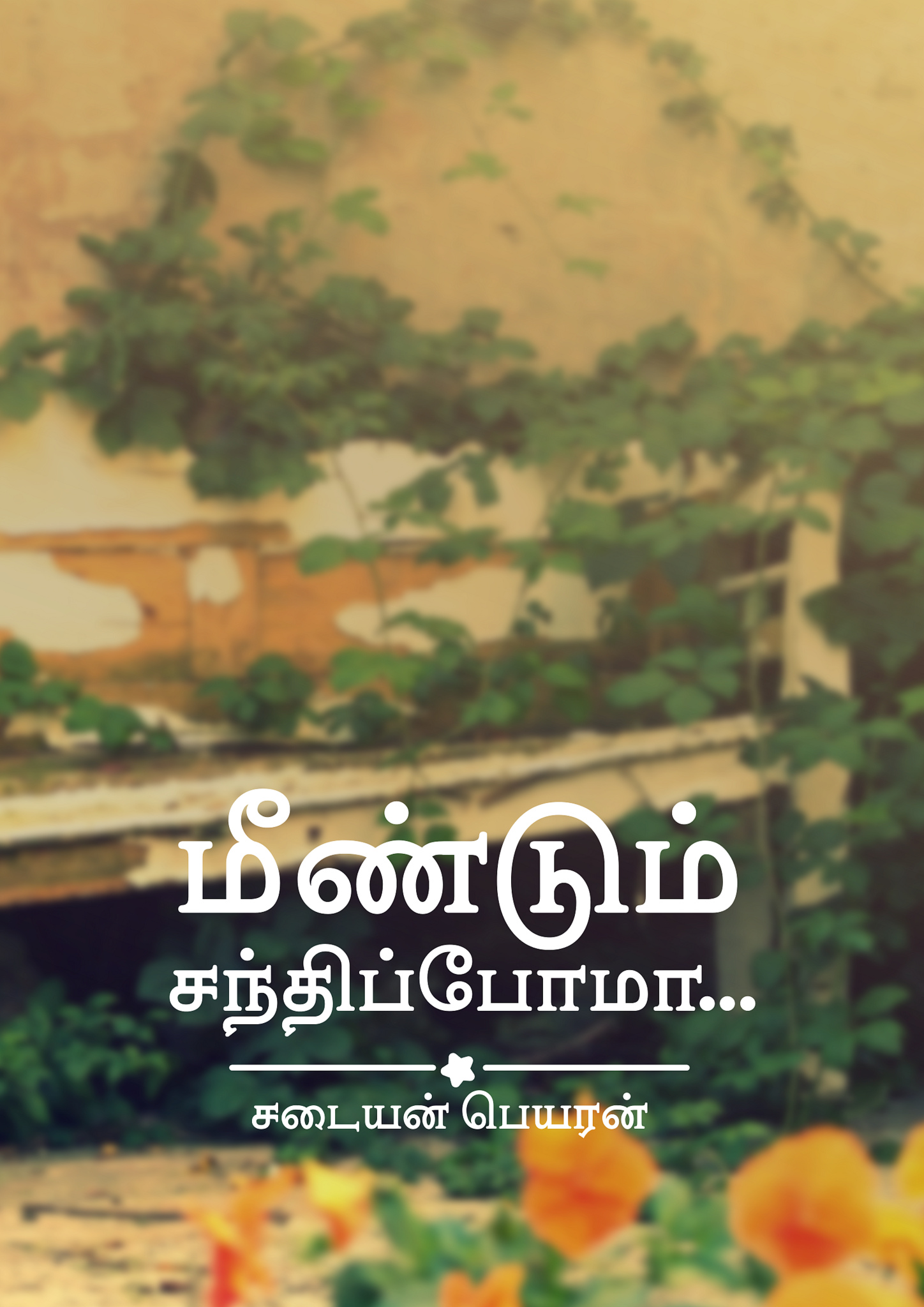Cover image for மீண்டும் சந்திப்போமா.....