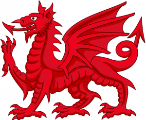 graphic representation of a red dragon