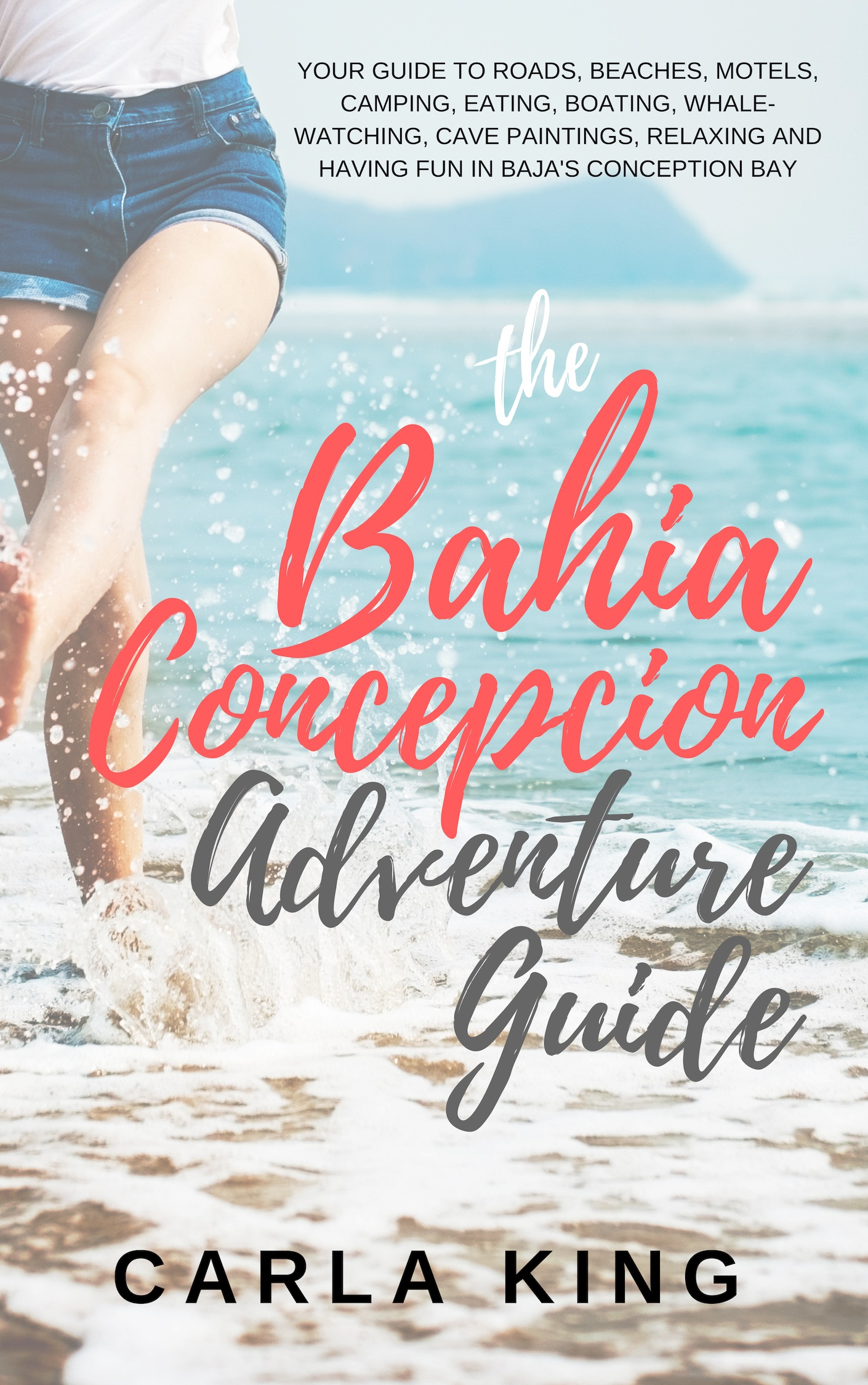 Cover image for Baja Adventure Guide
