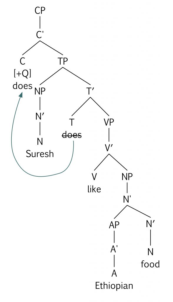 Keys essentials of linguistics which tree diagram correctly represents the question does suresh like ethiopian food ccuart Gallery