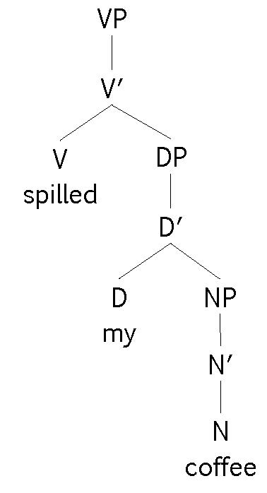 Keys essentials of linguistics in this tree diagram what position does the dp my coffee occupy complement ccuart Gallery