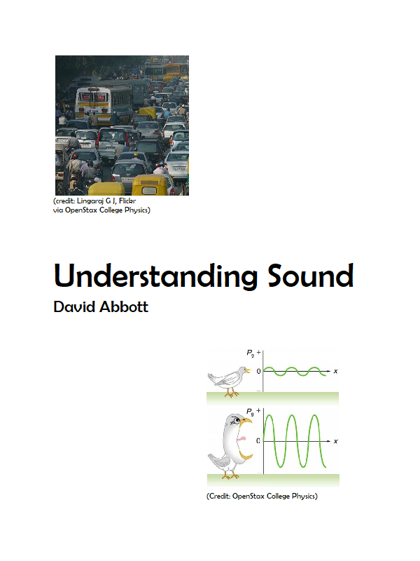 Cover image for Understanding Sound